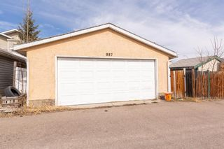 Photo 24: 887 Erin Woods Drive SE in Calgary: Erin Woods Detached for sale : MLS®# A1099055