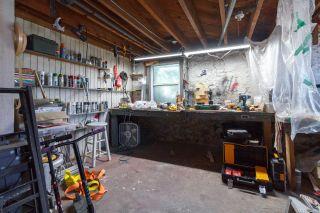 Photo 28: 3597 Cedar Hill Rd in Saanich: SE Cedar Hill House for sale (Saanich East)  : MLS®# 851466