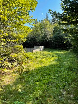 Photo 7: 1373 West Sable Road in Sable River: 407-Shelburne County Vacant Land for sale (South Shore)  : MLS®# 202122222