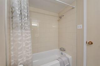 Photo 18: 301 10615 110 Street in Edmonton: Zone 08 Condo for sale : MLS®# E4250293