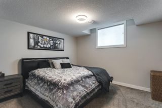 Photo 43: 145 Cranbrook Heights SE in Calgary: Cranston Detached for sale : MLS®# A1132528