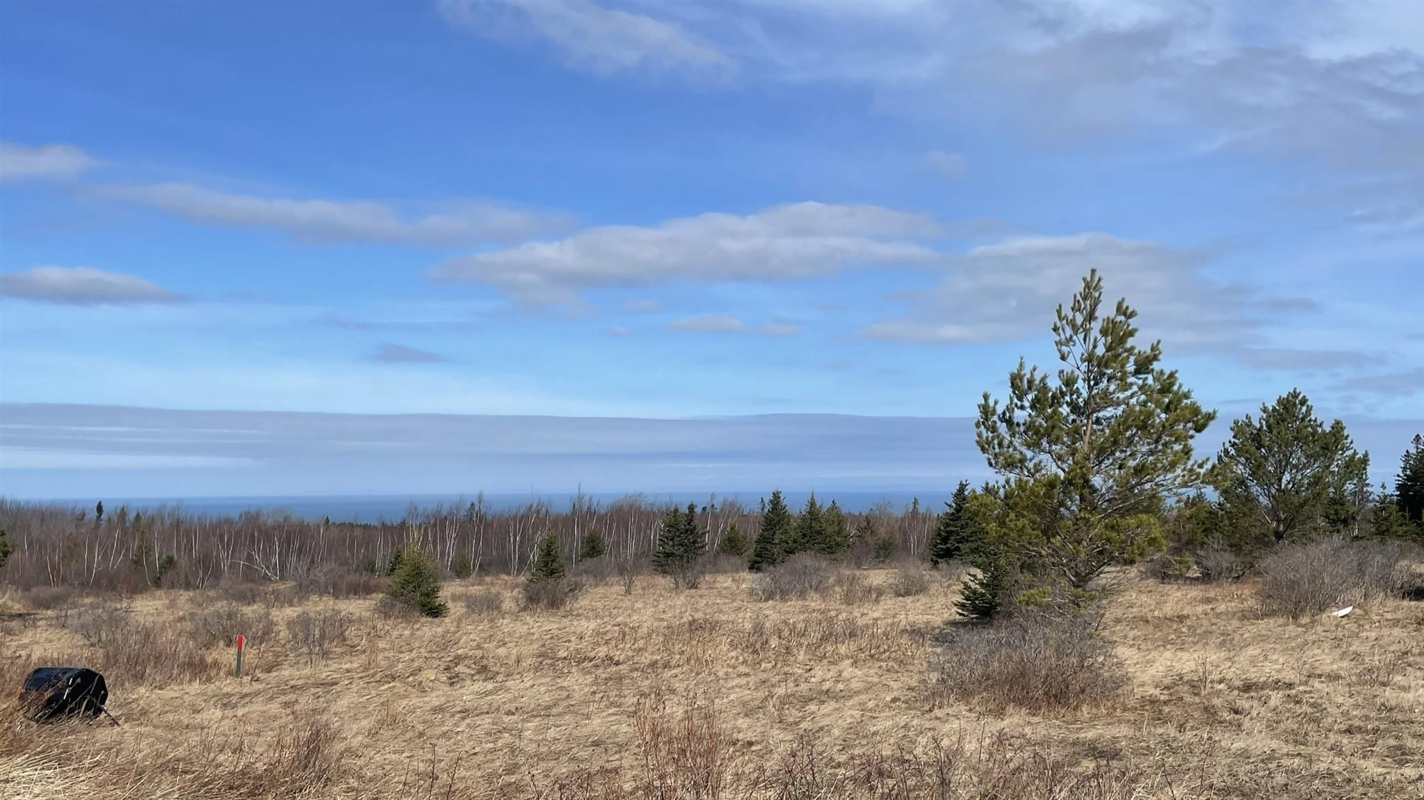 Main Photo: 2115 Arlington Road in Mount Rose: 400-Annapolis County Vacant Land for sale (Annapolis Valley)  : MLS®# 202106691