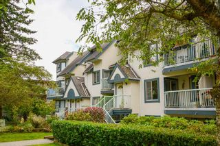 """Photo 26: 32 7520 18TH Street in Burnaby: Edmonds BE Townhouse for sale in """"WESTMOUNT PARK"""" (Burnaby East)  : MLS®# R2490563"""