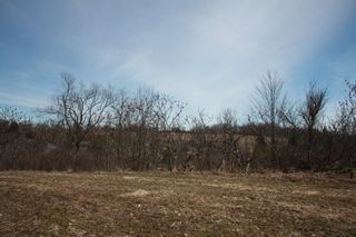 Photo 4: 2nd Line in Roseneath: Land Only for sale : MLS®# 188329