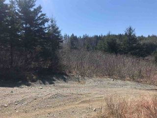 Photo 9: 11574 Highway 7 in Lake Charlotte: 35-Halifax County East Vacant Land for sale (Halifax-Dartmouth)  : MLS®# 201927372
