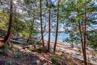 Photo 12: 3845 Shingle Spit Rd in : Isl Hornby Island House for sale (Islands)  : MLS®# 870117