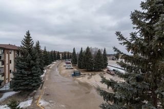 Photo 24: 303 815 St Anne's Road in Winnipeg: River Park South Condominium for sale (2F)  : MLS®# 202105024