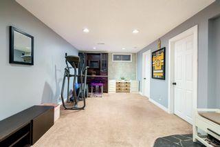 Photo 26: 6703 24 Avenue NE in Calgary: Pineridge Detached for sale : MLS®# A1124437