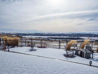 Photo 30: 47 Cranarch Terrace SE in Calgary: Cranston Detached for sale : MLS®# A1077265