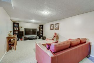 Photo 20: 114 Pinetree Bay NE in Calgary: Pineridge Detached for sale : MLS®# A1151101