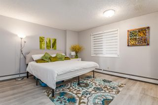 Photo 17: 102 333 2 Avenue NE in Calgary: Crescent Heights Apartment for sale : MLS®# A1110690