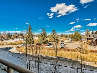 Photo 24: 307 2 HEMLOCK Crescent SW in Calgary: Spruce Cliff Apartment for sale : MLS®# A1076782