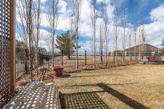 Photo 45: 17504 110 Street in Edmonton: Zone 27 House for sale : MLS®# E4242093