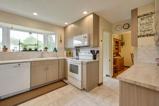 Photo 13: 12033 39 Street in Edmonton: Zone 23 House for sale : MLS®# E4248928