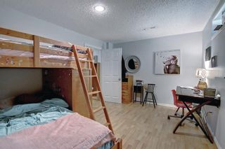 Photo 30: 690 Coventry Drive NE in Calgary: Coventry Hills Detached for sale : MLS®# A1144228
