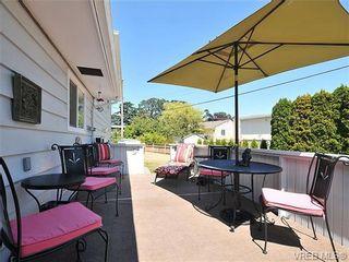 Photo 18: 4021 Oberlin Pl in VICTORIA: SE Gordon Head House for sale (Saanich East)  : MLS®# 648108