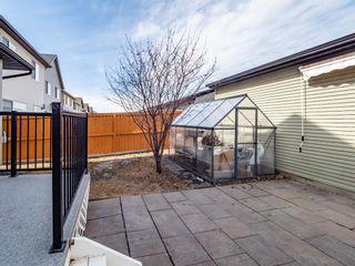Photo 27: 151 CRANFORD Crescent SE in Calgary: Cranston Detached for sale : MLS®# A1089730