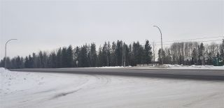 Photo 3: LOT 2 S MCBRIDE TIMBER Road in Prince George: Upper Mud Land for sale (PG Rural West (Zone 77))  : MLS®# R2543587