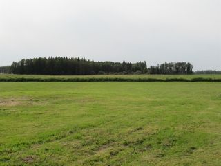 Photo 22: 385040 Range Road 6-3: Rural Clearwater County Detached for sale : MLS®# A1145666
