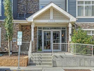 Photo 29: 4110 155 SKYVIEW RANCH Way NE in Calgary: Skyview Ranch Condo for sale : MLS®# C4131511