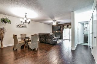 Photo 2: 45 3030 TRETHEWEY Street: Townhouse for sale in Abbotsford: MLS®# R2567710