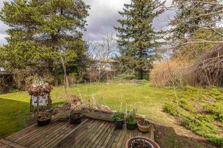Photo 38: 33909 FERN Street in Abbotsford: Central Abbotsford House for sale : MLS®# R2557581