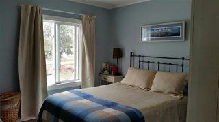 Photo 4: 8909 80 AV NW: Edmonton House for sale : MLS®# E4011863
