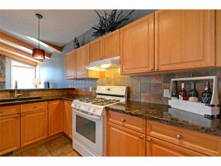 Photo 4: 94 SIMCOE Circle SW in Calgary: Signature Parke House for sale : MLS®# C4006481