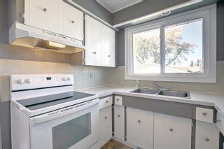 Photo 11: 11336 164 Avenue in Edmonton: Zone 27 House for sale : MLS®# E4264049