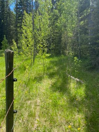 Photo 15: 5.78 Acres Parkins Road: Rural Foothills County Land for sale : MLS®# A1086953