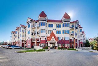 Main Photo: 202 30 Royal Oak Plaza NW in Calgary: Royal Oak Apartment for sale : MLS®# A1146892