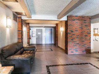 Photo 3: 103 13530 HILTON Road in Surrey: Bolivar Heights Condo for sale (North Surrey)  : MLS®# R2601001
