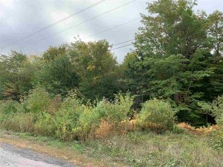 Photo 2: Lot 7-8 Logan Road in Frasers Mountain: 108-Rural Pictou County Vacant Land for sale (Northern Region)  : MLS®# 202020090