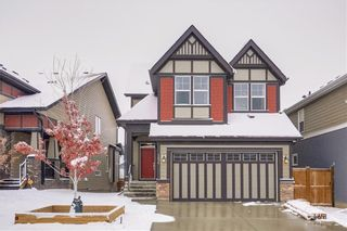 Photo 23: 154 MASTERS Point SE in Calgary: Mahogany Detached for sale : MLS®# C4297917