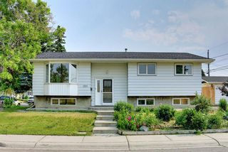 Main Photo: 199 Marlyn Place NE in Calgary: Marlborough Detached for sale : MLS®# A1126383