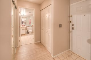 """Photo 16: 211 1200 EASTWOOD Street in Coquitlam: North Coquitlam Condo for sale in """"Lakeside Terrace"""" : MLS®# R2195030"""