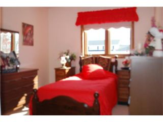 Photo 10: 443 Sarah Avenue in SOMERSET: Manitoba Other Residential for sale : MLS®# 1004270