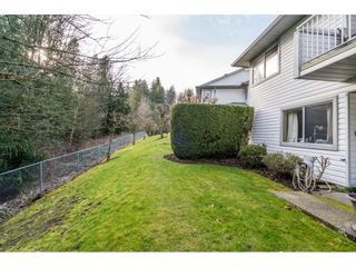 """Photo 40: 7 3351 HORN Street in Abbotsford: Central Abbotsford Townhouse for sale in """"Evansbrook"""" : MLS®# R2544637"""