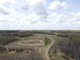 Photo 8: 52064 RGE RD 225: Rural Strathcona County House for sale : MLS®# E4244161
