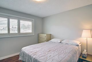 Photo 12: 5919 Pinepoint Drive NE in Calgary: Pineridge Detached for sale : MLS®# A1111211