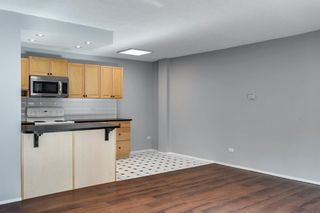 Photo 20: 307 903 19 Avenue SW in Calgary: Lower Mount Royal Apartment for sale : MLS®# A1152500