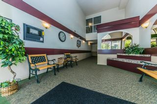 "Photo 13: 203 11601 227 Street in Maple Ridge: East Central Condo for sale in ""CASTLEMOUNT"" : MLS®# R2383867"