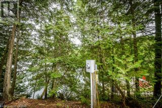 Photo 11: 0 MARKS POINT Road in Bancroft: Vacant Land for sale : MLS®# 40141117