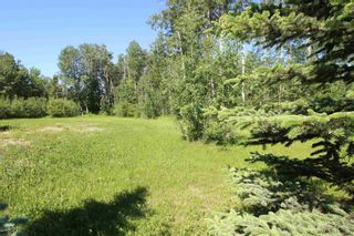 Photo 6: 568 Beach Road: Rural Wetaskiwin County Rural Land/Vacant Lot for sale : MLS®# E4251590