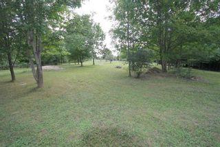 Photo 13: 1564 Prospect Road in Kawartha Lakes: Rural Eldon Property for sale : MLS®# X5363567