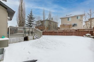 Photo 44: 218 Citadel Estates Heights NW in Calgary: Citadel Detached for sale : MLS®# A1073661