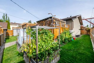 Photo 34: 131 Queensland Circle SE in Calgary: Queensland Detached for sale : MLS®# A1148253