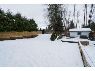 """Photo 17: 22698 KENDRICK Loop in Maple Ridge: East Central House for sale in """"Kendrick Loop"""" : MLS®# R2429797"""