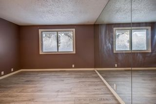 Photo 15: 4 Abergale Way NE in Calgary: Abbeydale Detached for sale : MLS®# A1068236