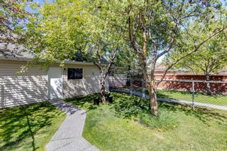 Photo 45: 28 Promenade Way SE in Calgary: McKenzie Towne Row/Townhouse for sale : MLS®# A1104454
